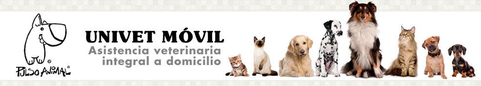 Recomendar Univet móvil - Pulso Animal en Manzanares el Real, Madrid  - veterinario a domicilio